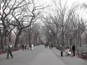 C. Park