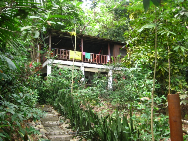 Hostel in the jungle